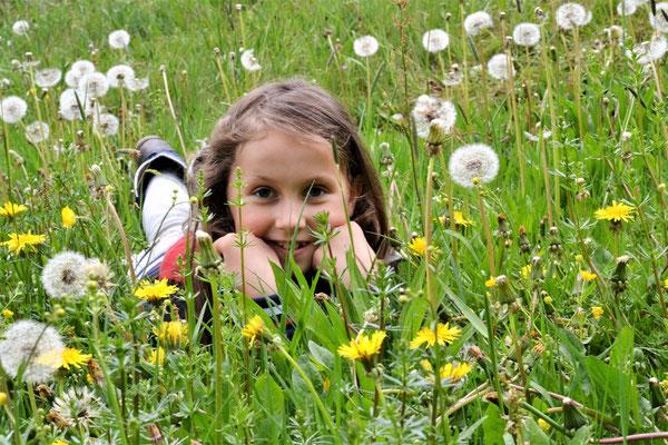 Bild 01: Blumenfee