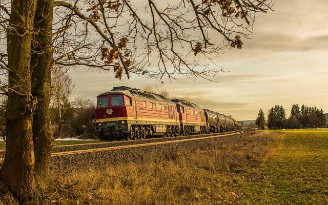 Diesel-Power, Foto: Reinhold Buchner
