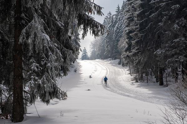 Zwei Spuren im Schnee, Foto: Josef Beinrucker