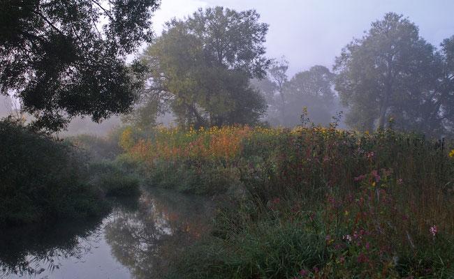 Morgenstunde, Foto: Annelies Neumann