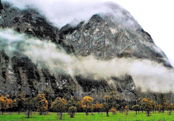 Blick zum Ahornbogen, Foto: Margareta Czichon