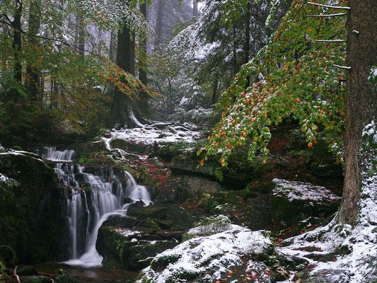 Bild 12: Wenn aus Herbst Winter wird