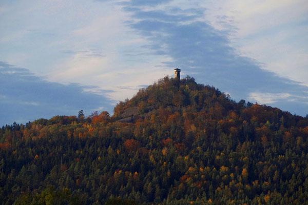 Bild 04: Herbst am Rauen Kulm, Foto: Annelies Neumann