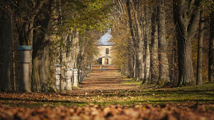 Bild 06: Steinbergallee, Foto: Josef Beinrucker