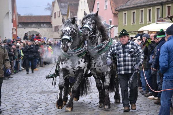 Roßmarkt Berching, Foto: Bernhard Czichon