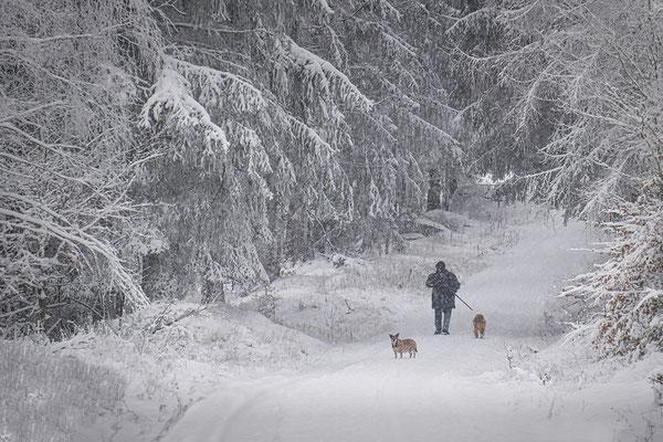 Winterspaziergang, Foto: Josef Beinrucker