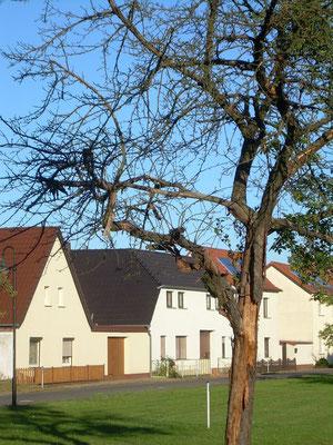 Großkoschen: Der Dorfplaz