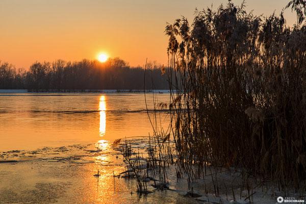 Sonnenuntergang an der Donau bei Feldkirchen