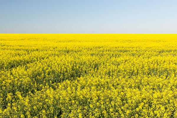 Rural Manitoba sites de rencontre