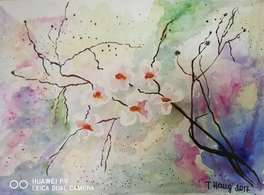 Kirschblüte, Aquarell, 30x40, € 100,00