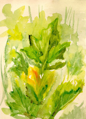 """Kürbisblüte"", Aquarell, 21x30"