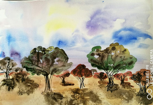 Olivenlandschaft, Aquarell, 30x40, € 50, 00