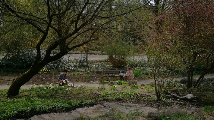 Im Aroma Garten