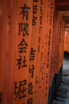 I torii del Fushimi Inari