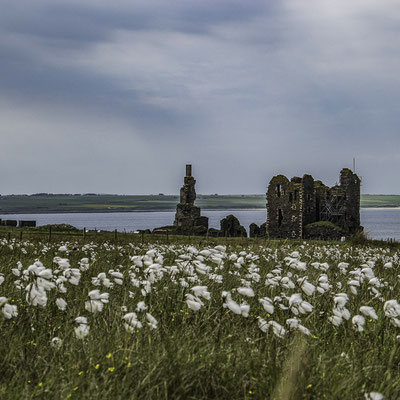 Le rovine di Castle Sinclair