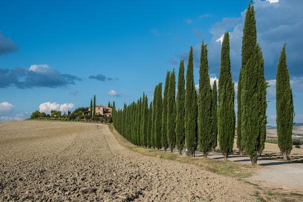 Tipico paesaggio in Toscana tra poderi e colline