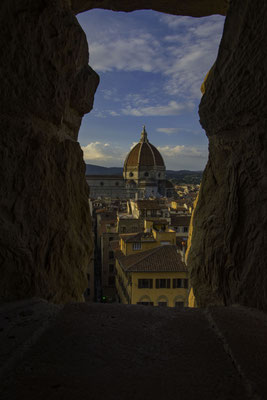 Florence - 6