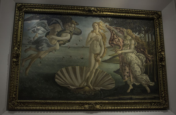 Florence - Venus of Botticelli