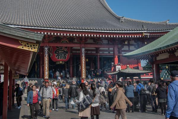 Folla di turisti e fedeli al Senso-ji