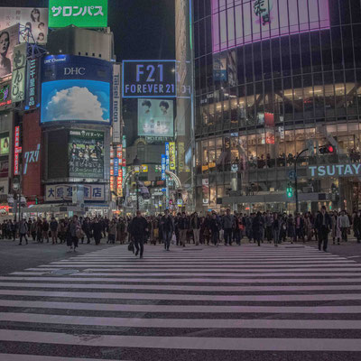 Shibuya Crossing - In attesa del verde