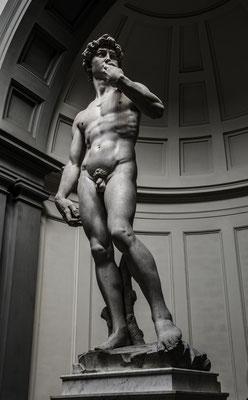 Florence - David
