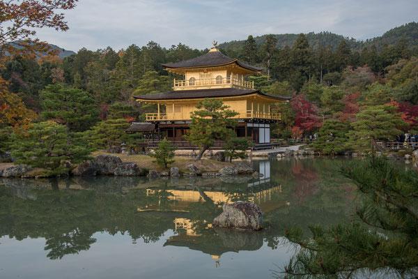 Il meraviglioso Kinkaku-ji