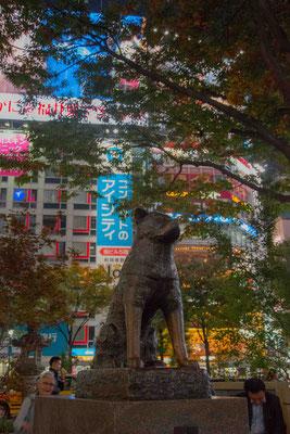 Shibuya - Statua di Hachiko