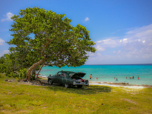 Tipico scenario cubano lunga la costa vicino Playa Larga