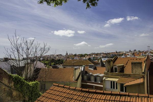 Lisbona - Principe Real - 3