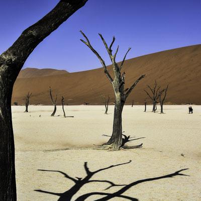 Namibia - Meraviglia della Natura