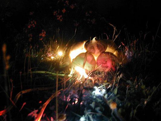 Glühbirnen in der Nacht, heimischer Garten, Tiengen