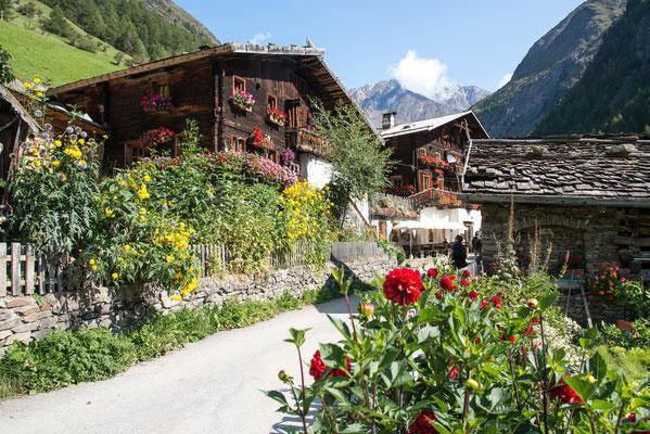 Vorgärten im Pfossental in Südtirol; Foto: Werner  Beermann