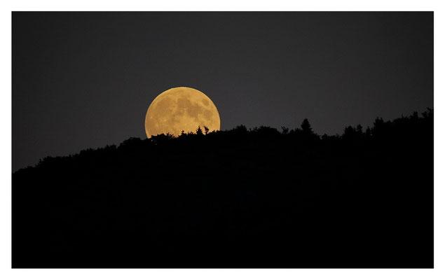 Vollmond - Mondaufgang