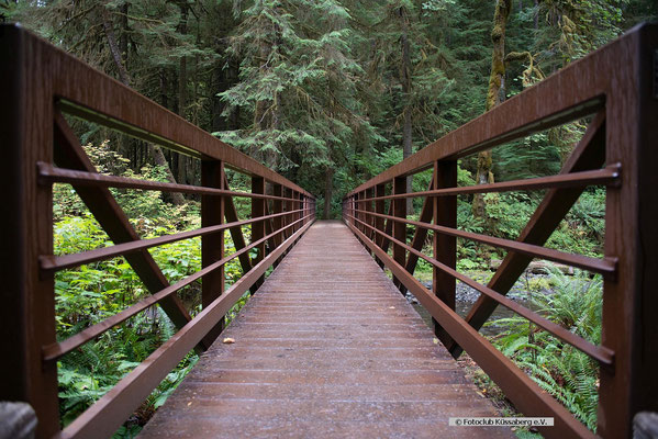 Olympic national Park Washington;  Foto: Inge Straub