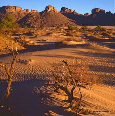 Sonnenaufgang in der Sahara; Foto: Wolfgang Eigener