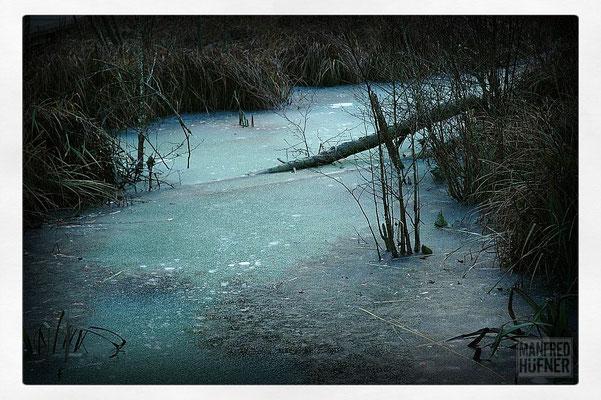 Vereister See im Wangental