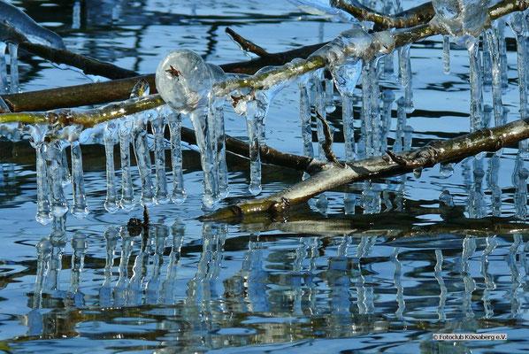 Januar am Starnberger See; Foto: Rudi Franck
