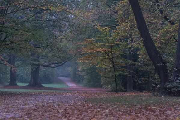 München, englischer Garten; Foto: Rudi Franck