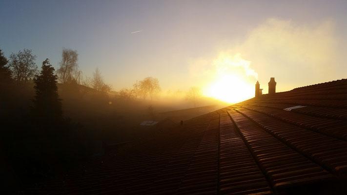 Dachlandschaft; Foto: André Rusch