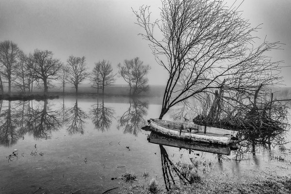 Stadlerweiher, ZH; Foto: Michael Paiano