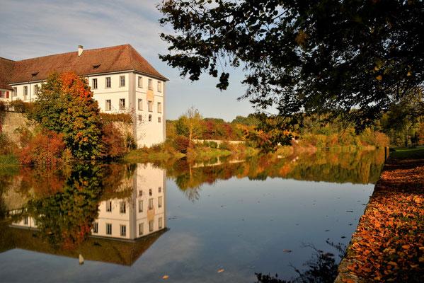 Rheinau; Foto: Sabine Mathis
