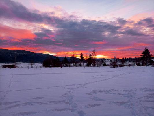 Sonnenuntergang; Foto: Michael Götz