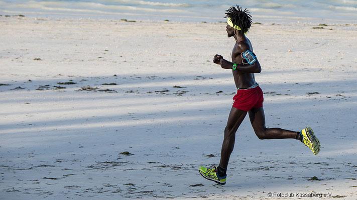 Strandläufer auf Sansibar; Foto: Iris Blümling
