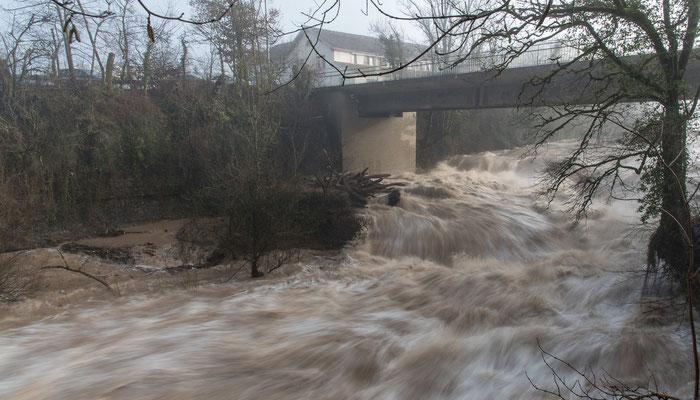 Januar-Hochwasser an der Wutach; Foto: Rudi Franck
