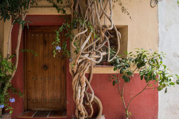 Eine Tür in Andalusien; Foto: Werner Beermann