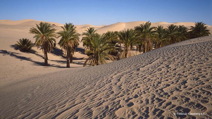 Sandmeer bei EL OUED - Nordsahara/ Algerien; Foto:  Wolfgang Eigener
