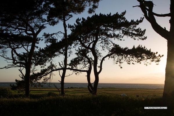 Golfressort an der Ostsee; Foto: Katrin Schönenberger