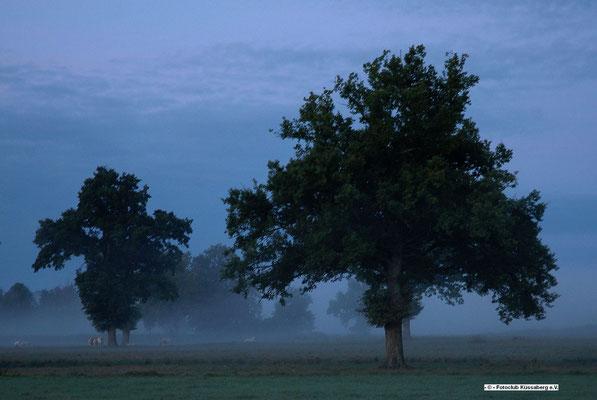 Morgenstimmung in Frankreich; Foto: Manfred Hüfner