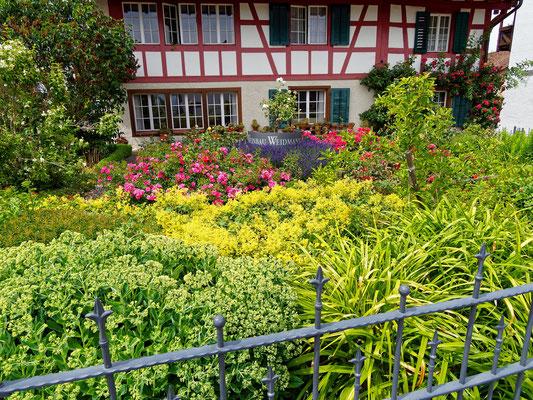 Regensberg bei Dielsdorf, Foto: Peter Dreamann