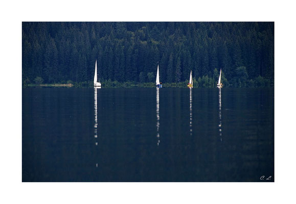 Segleboote am Schluchsee
